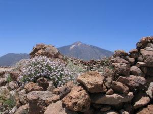 Ako sa oddychuje na Tenerife?
