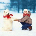 Ako sa správne starať v zime o svojho psíka