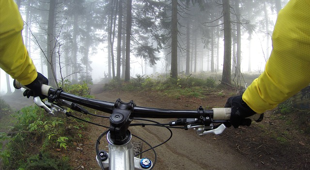 Ako kúpiť vhodný bicykel?
